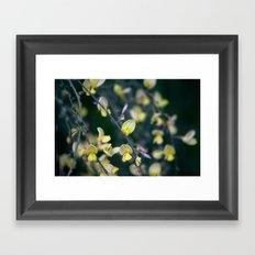 Yellow Blur Framed Art Print
