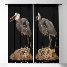Heron Eating the Mole Blackout Curtain