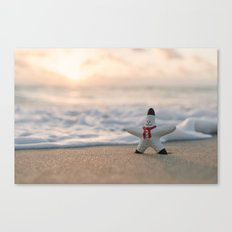 A holiday wish Canvas Print