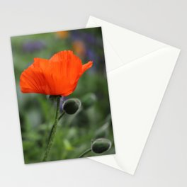 Poppy in Bloom Stationery Cards