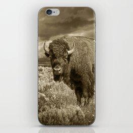 American Buffalo in Sepia Tone iPhone Skin