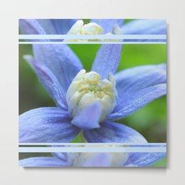 SOFT BLUE #1 - Clematis Alpina Metal Print