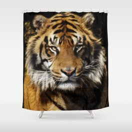 Tiger, Tiger - Big Cat Art Design Shower Curtain