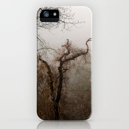 Misty Morning in Scotland iPhone Case