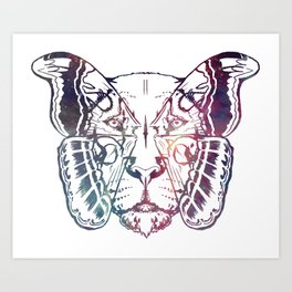 Leoidoproar - Galaxy Art Print