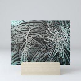 Garden Star Mini Art Print