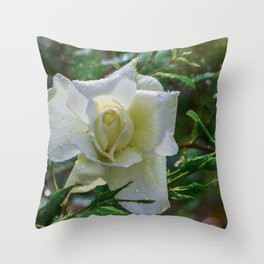 White rose Throw Pillow