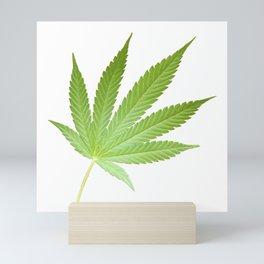 Hemp Pot Leaf 420 Cannabis Mini Art Print