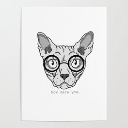 Offended Cat Poster