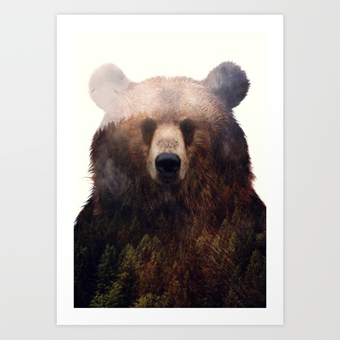 Discover the motif KING OF THE FOREST by Andreas Lie as a print at TOPPOSTER
