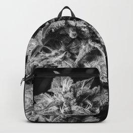 Haze Berry Backpack