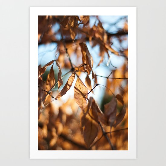 Still Hanging On Art Print
