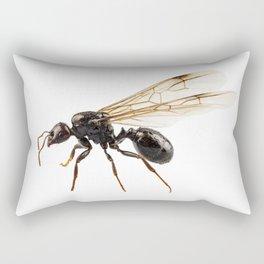 Black Winged garden ant species lasius niger Rectangular Pillow