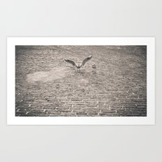 Bird2 Art Print