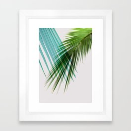 Palm Leaf, Botanical Leaves Framed Art Print