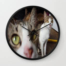 Back Yard Kitties  Wall Clock