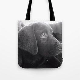 Labrador Puppy Portrait Tote Bag