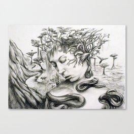 Imaginary Canvas Print
