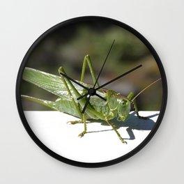 Katydid - Green weirdo Wall Clock