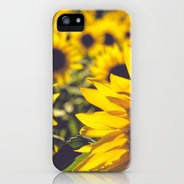 Summer Sunflower Love iPhone Case