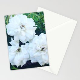 Three White Roses Stationery Cards