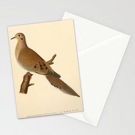 Mourning Dove, zenaidura carolinensis18 Stationery Cards