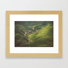 Asia 47 Framed Art Print