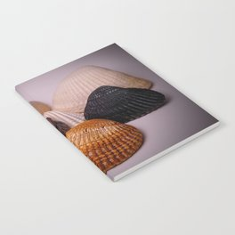 Different color shell Notebook