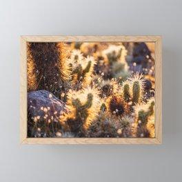 Cacti Medley Framed Mini Art Print