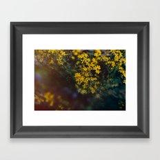 Floral Daze Framed Art Print