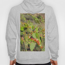 green cactus with red and yellow flower texture background Hoody