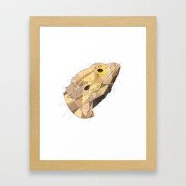Beardie Framed Art Print