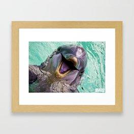 Dolphin Smile Framed Art Print