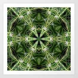 Spider Plant Kaleidoscope Art 1 Art Print