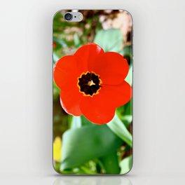 Red Portal iPhone Skin