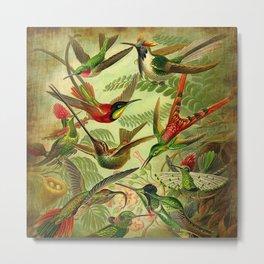 HUMMINGBIRD COLLAGE Metal Print