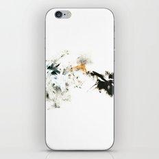 Winter's Meditation iPhone & iPod Skin