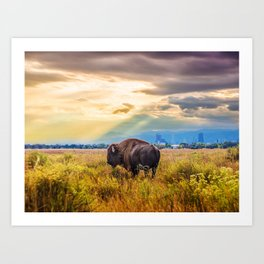 The Great American Bison Art Print