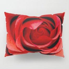 Cruel Beauty Pillow Sham