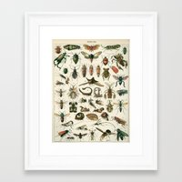 insects Framed Art Prints featuring Insects by Noughton