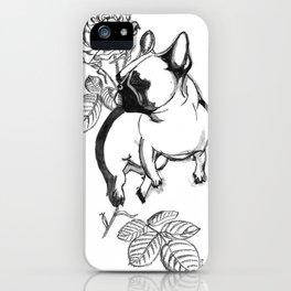 Rosie dog iPhone Case