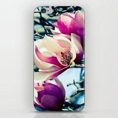 Freshly Opened iPhone & iPod Skin