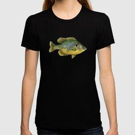 Pumpkinseed T-shirt