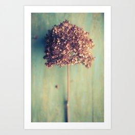 Autumnal Light no.2 Art Print