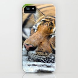 Tiger, Tiger Fast Asleep iPhone Case