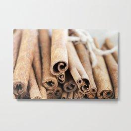 rope spice cinnamon Metal Print