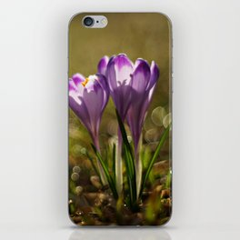 Blooming fields of morning dew iPhone Skin