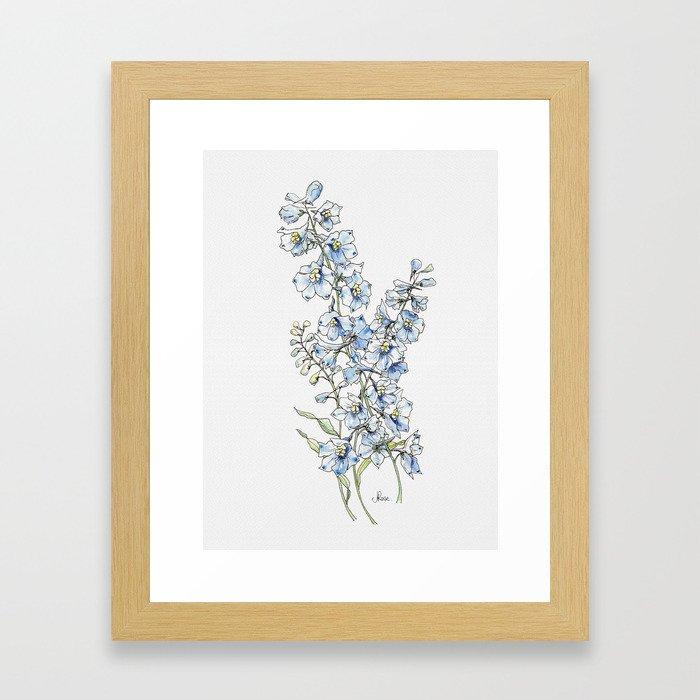 Blue Delphinium Flowers Framed Art Print