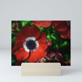 Red Poppy Mini Art Print