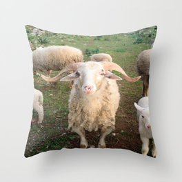 A Flock Of Sheep In A Rural Setting Throw Pillow